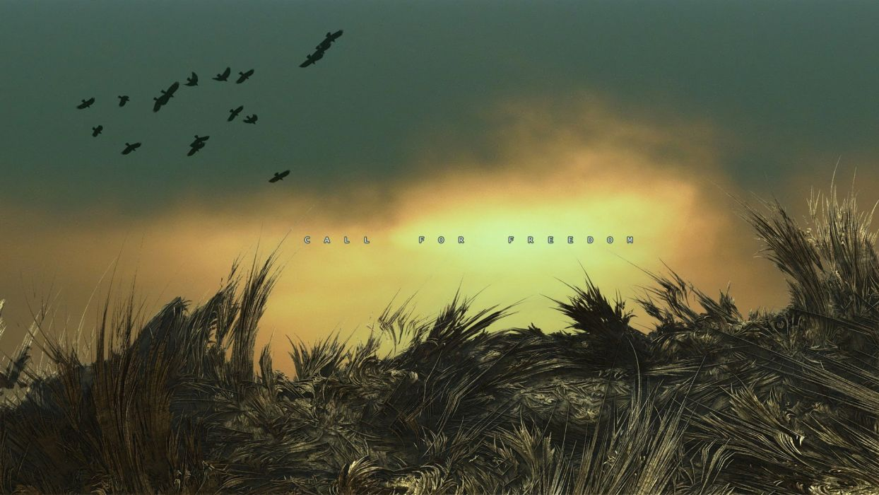 Freedom Birds Quotes Fantasy Art Digital Liberty Pasture Wallpaper