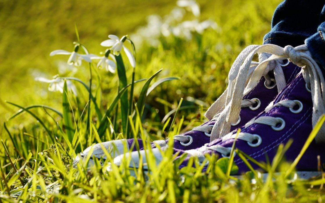 grass shoes objects white flowers wallpaper