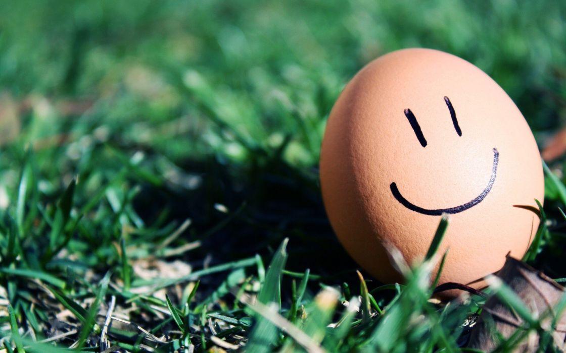 eggs smiley smiling wallpaper