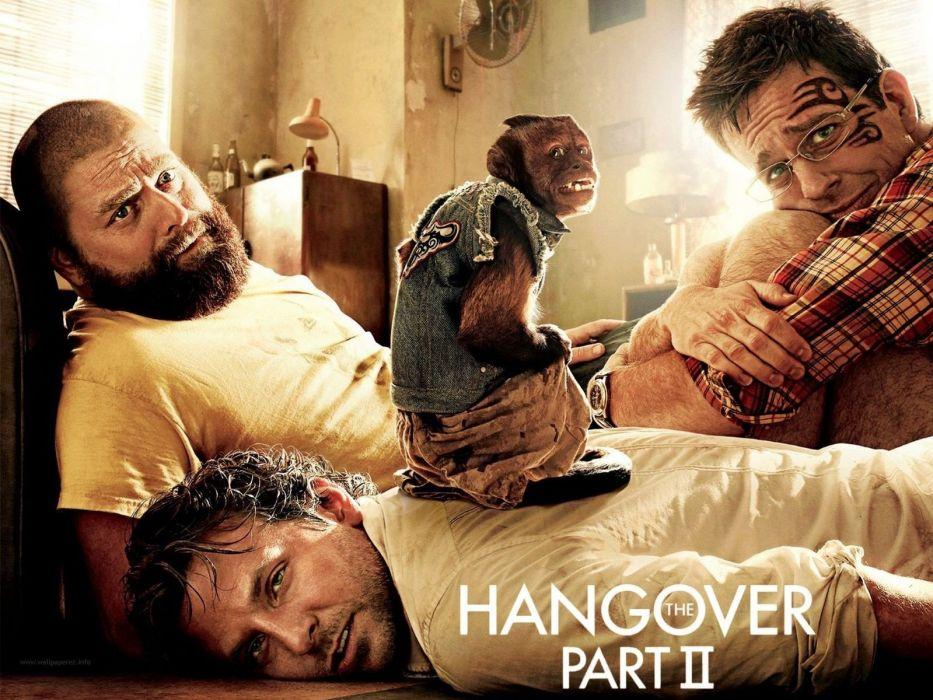 movies Bradley Cooper The Hangover Part II Ed Helms wallpaper