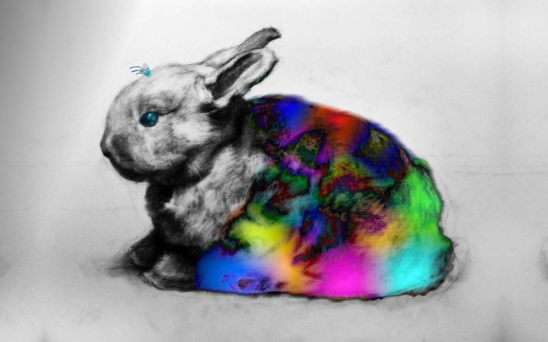 bunnies blanket colors wallpaper