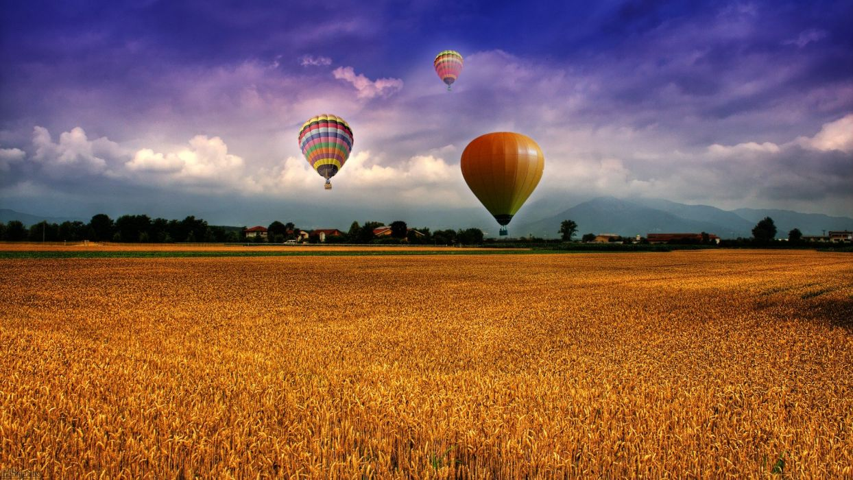 landscapes fields skyscapes wallpaper