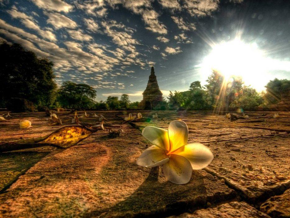light Thailand Mai afternoon wallpaper
