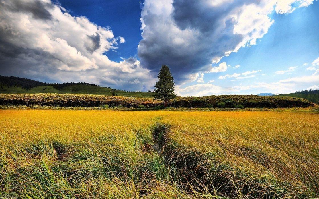 clouds landscapes nature grass hills wallpaper