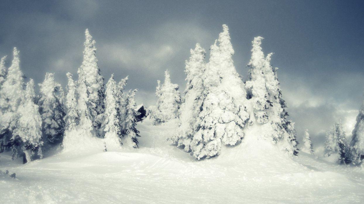 landscapes nature winter snow land wallpaper