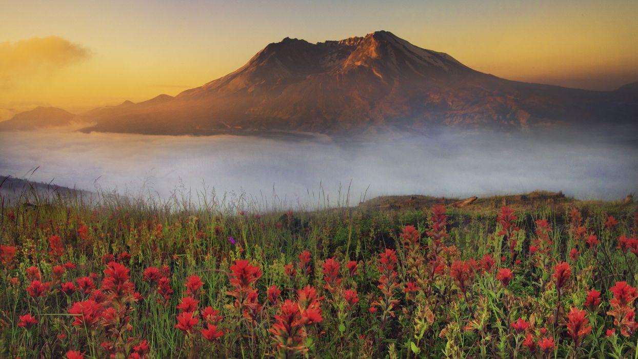 sunrise Washington Mount wallpaper