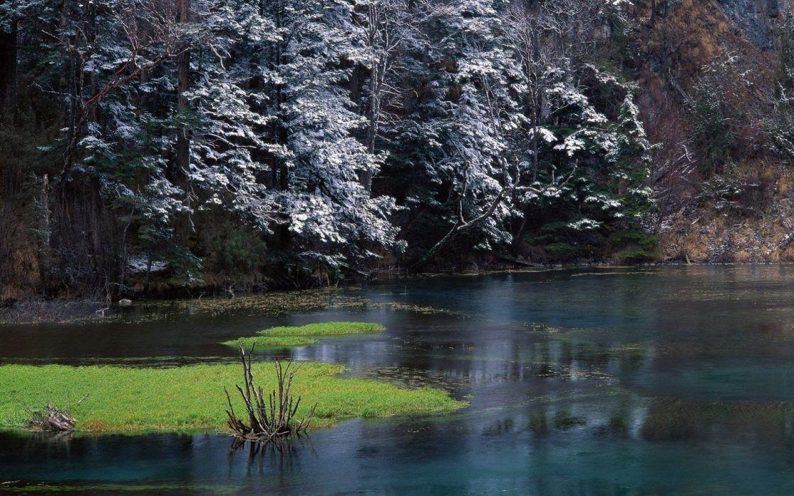 landscapes nature snow trees rivers wallpaper