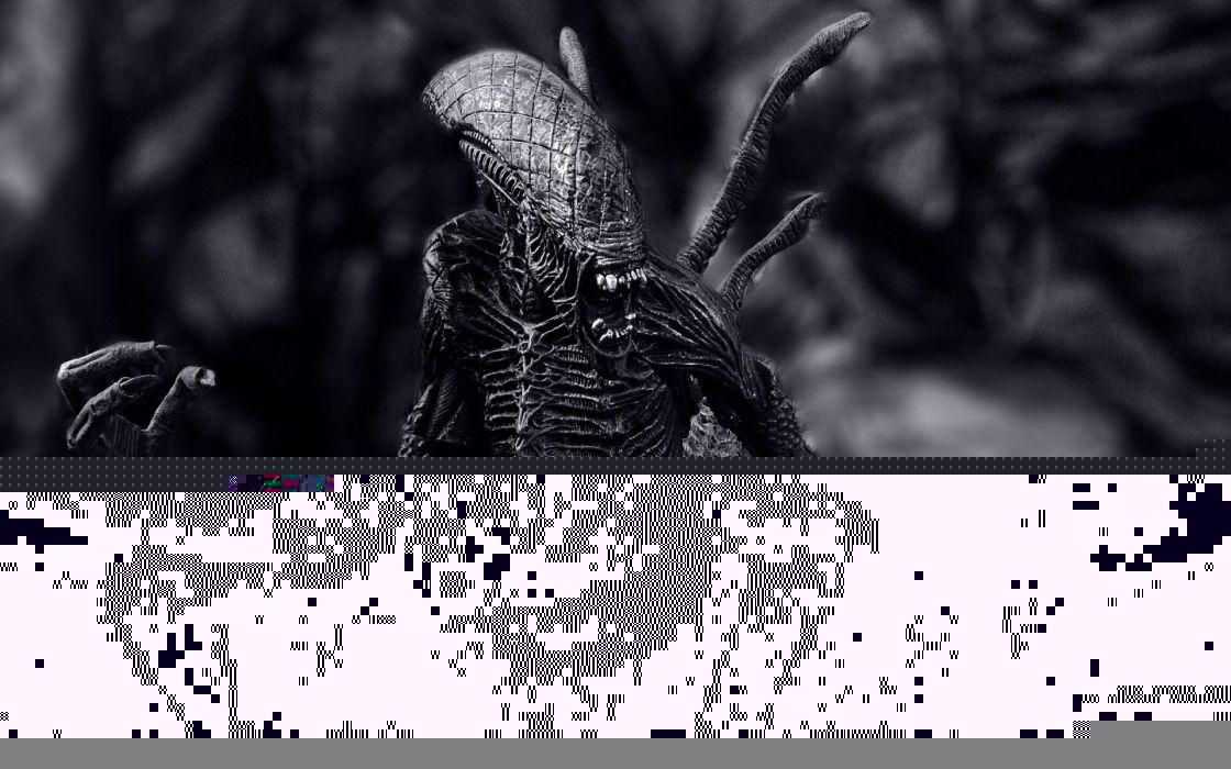 Alien Xenomorph sci-fi movie monster wallpaper