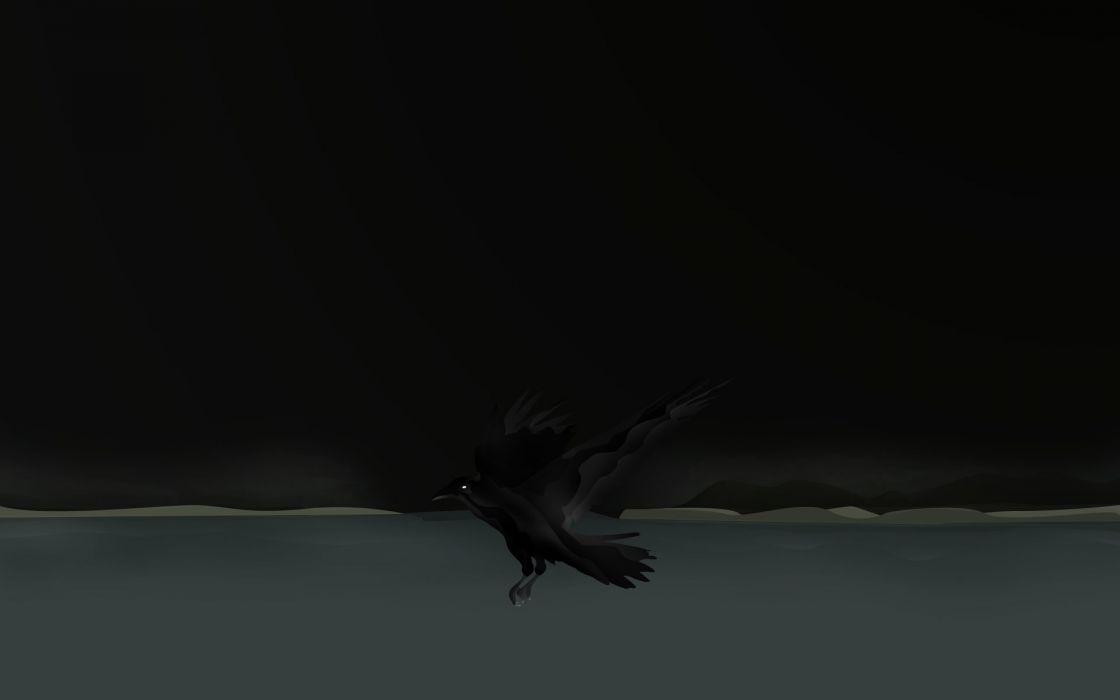 Bird Crow wallpaper