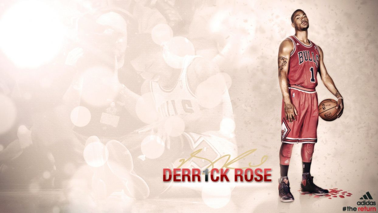 Chicago Derrick Rose Bulls wallpaper
