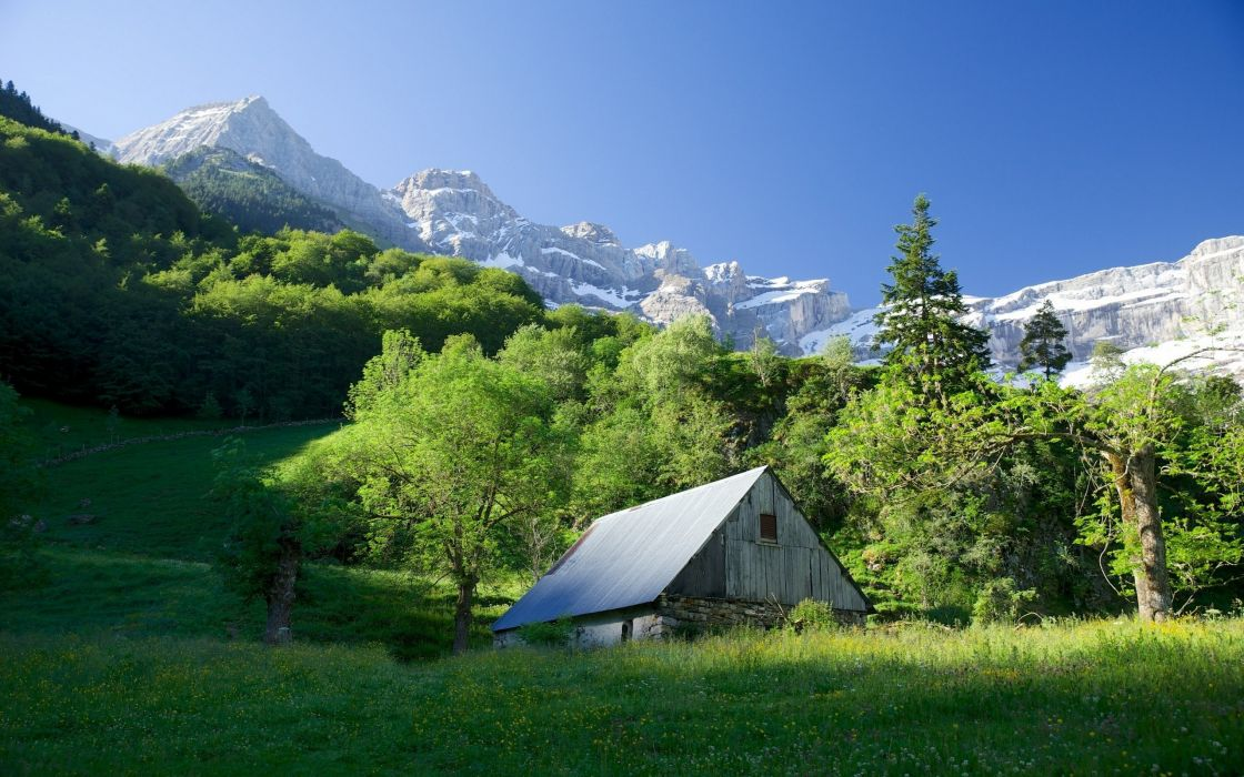 mountain forest home snow sunny wallpaper