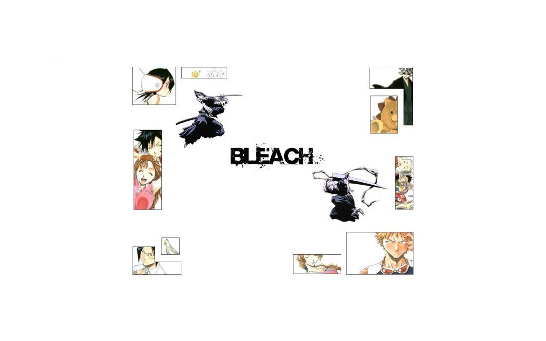Bleach Kurosaki Ichigo Kon Urahara Kisuke Inoue Orihime Kuchiki Rukia Abarai Renji Ishida Uryuu Tatsuki Arisawa white background wallpaper