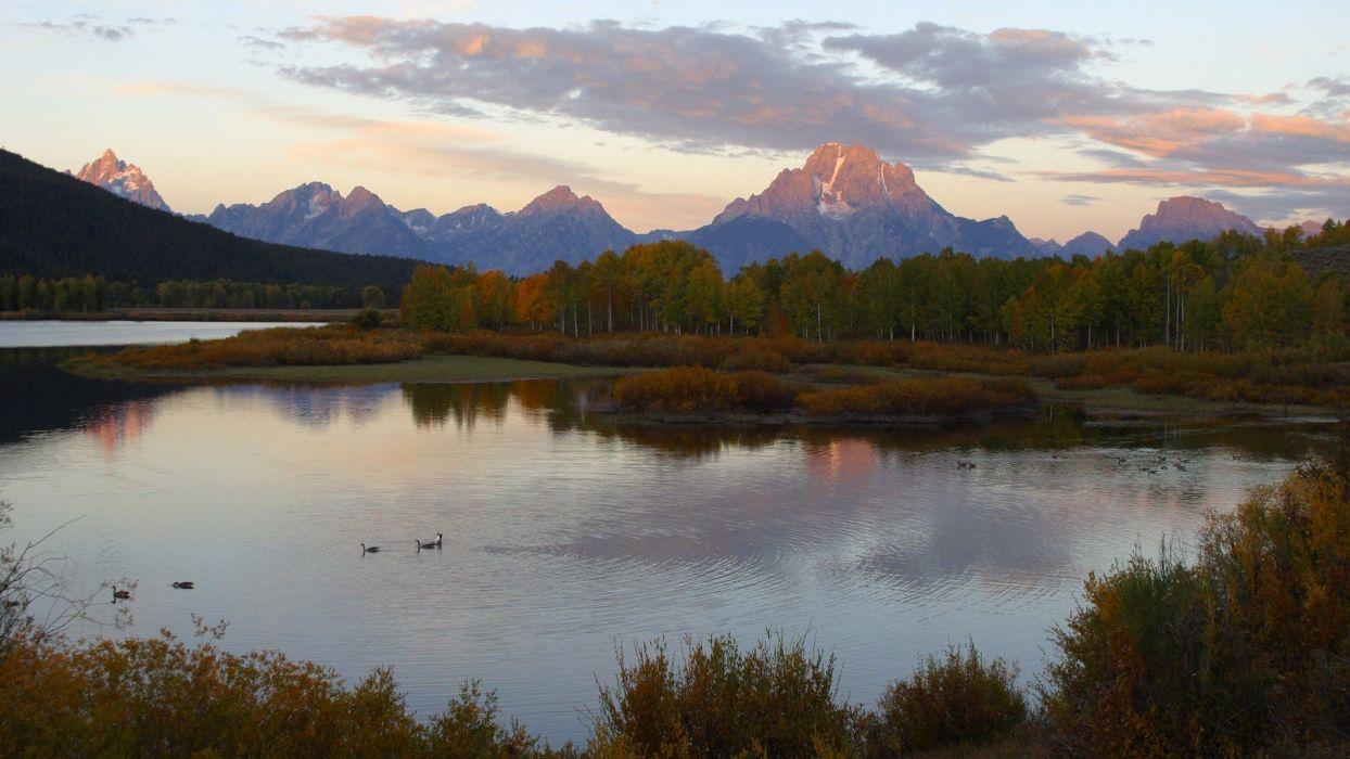 Canada Wyoming rivers geese wallpaper