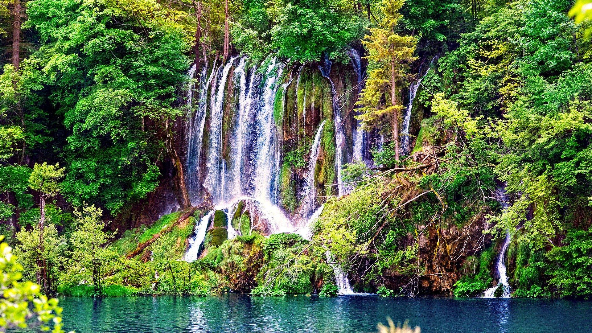 Water trees jungle waterfalls wallpaper 1920x1080 - 4k ultra hd wallpapers for desktop ...