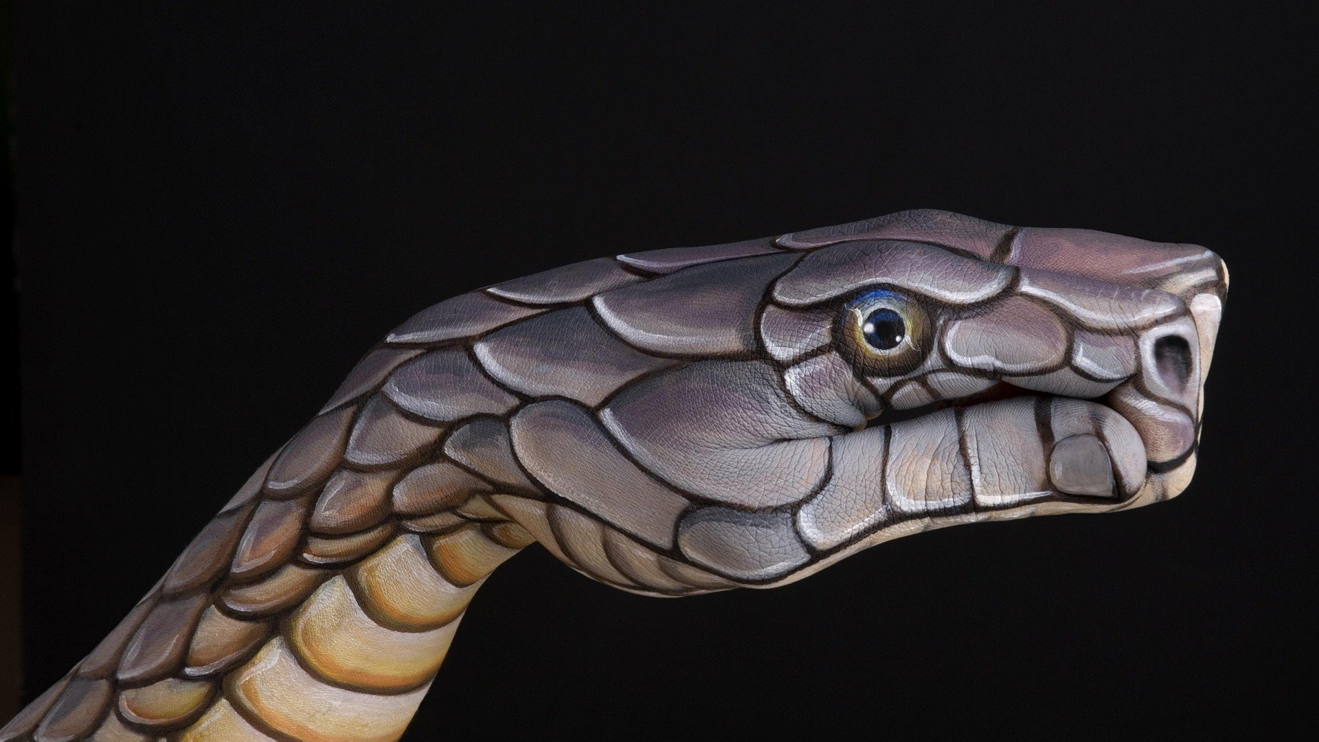 Hands Snakes Black Background Body Painting Wallpaper 1920x1080 249183 Wallpaperup
