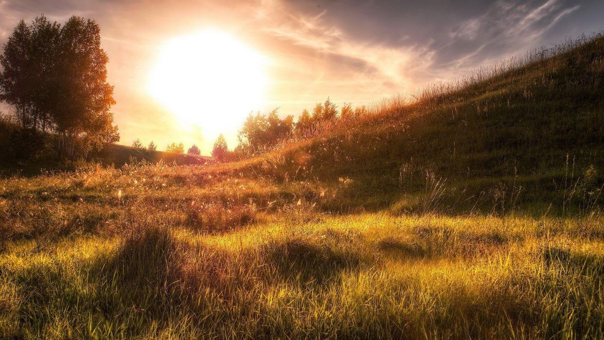 landscapes grass sunlight wallpaper