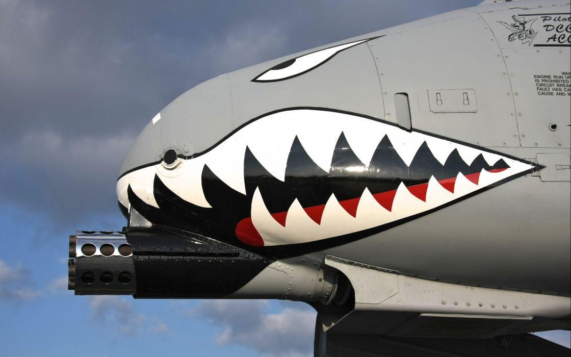 A-10 bomber jet fighter bomb military airplane plane thunderbolt warthog (58) wallpaper