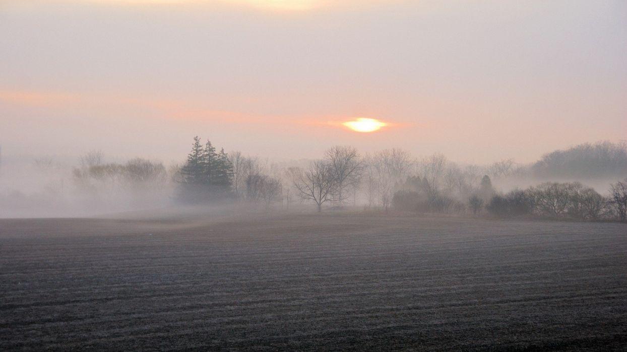 landscapes mist wallpaper