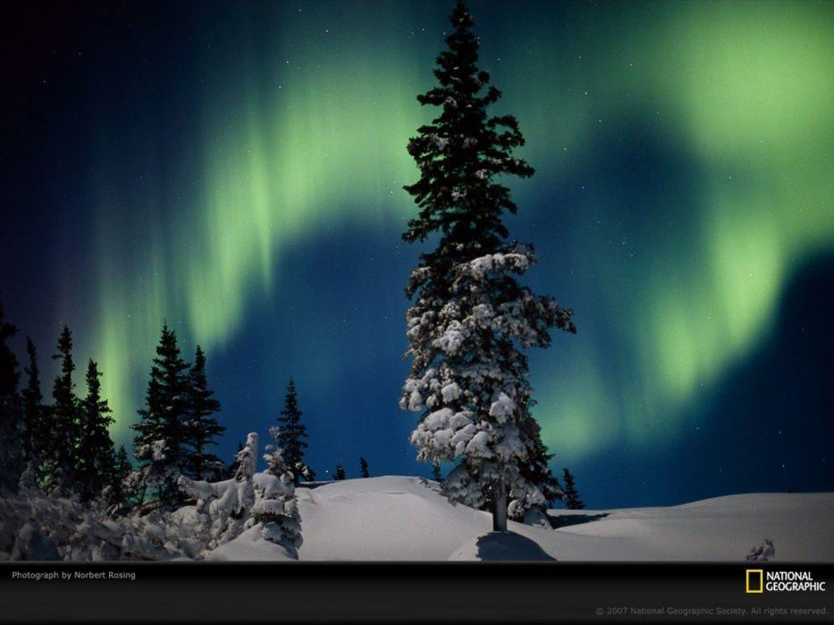 snow trees aurora borealis National Geographic snow landscapes wallpaper