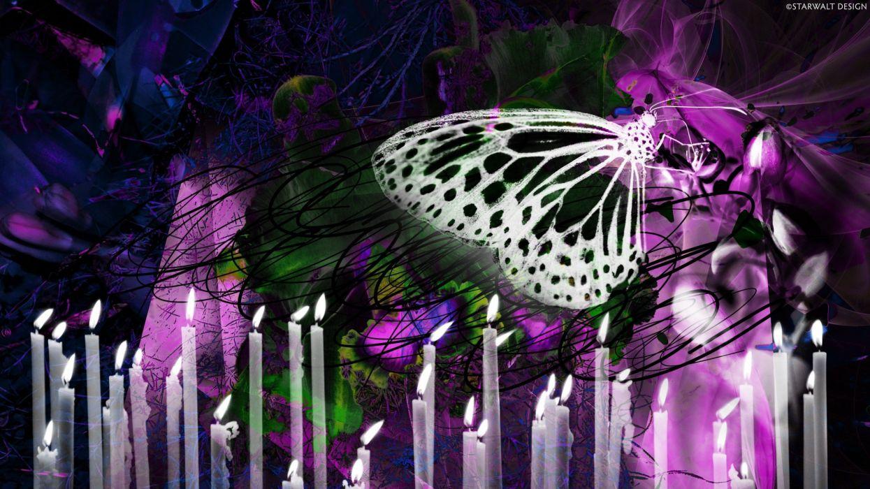 abstract lights butterflies wallpaper