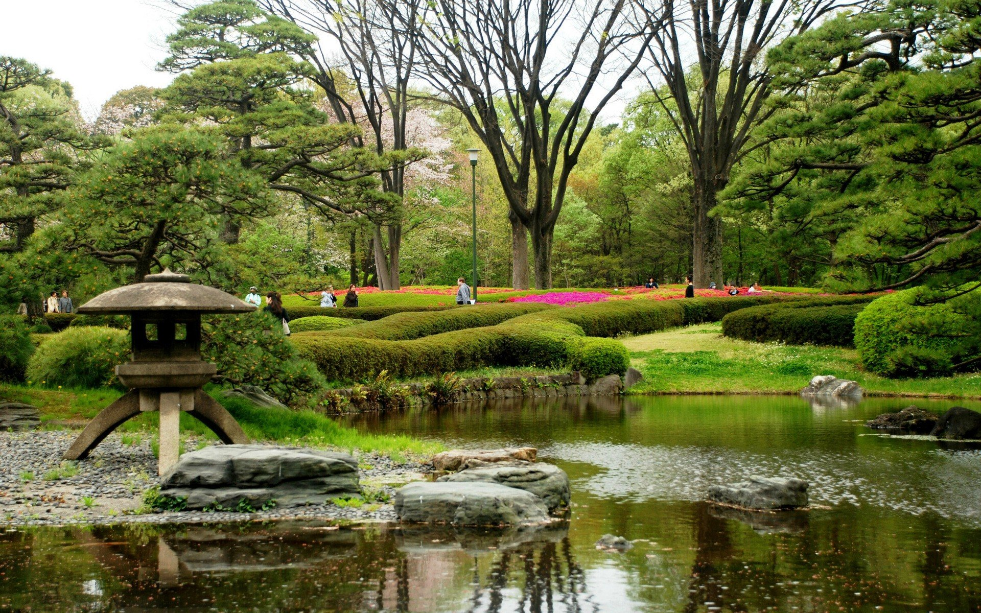 Water japan trees flowers spring japanese gardens for Flowers for japanese gardens