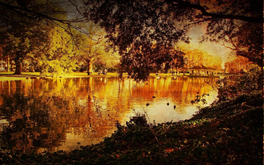 landscapes trees autumn lakes Lack wallpaper