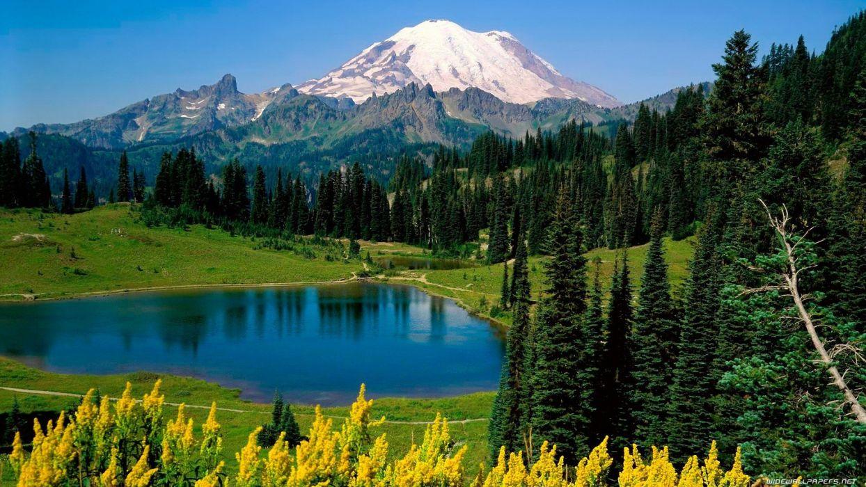 mountains landscapes nature forests National Park Mount Rainier Washington State wallpaper