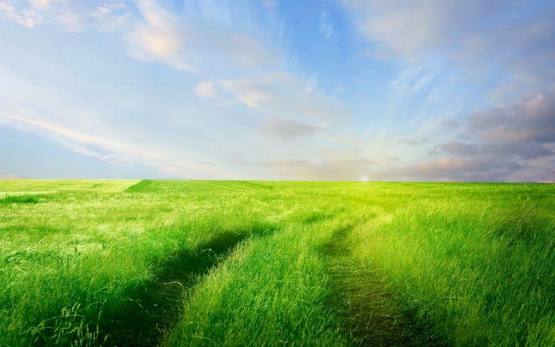 clouds landscapes nature grass fields wallpaper