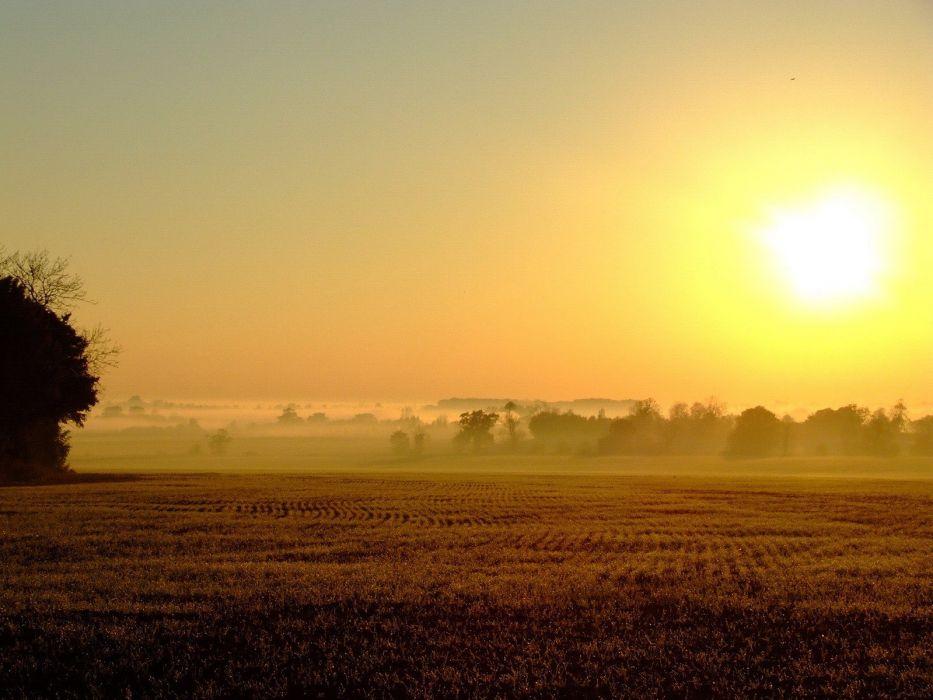 sunset fields wallpaper