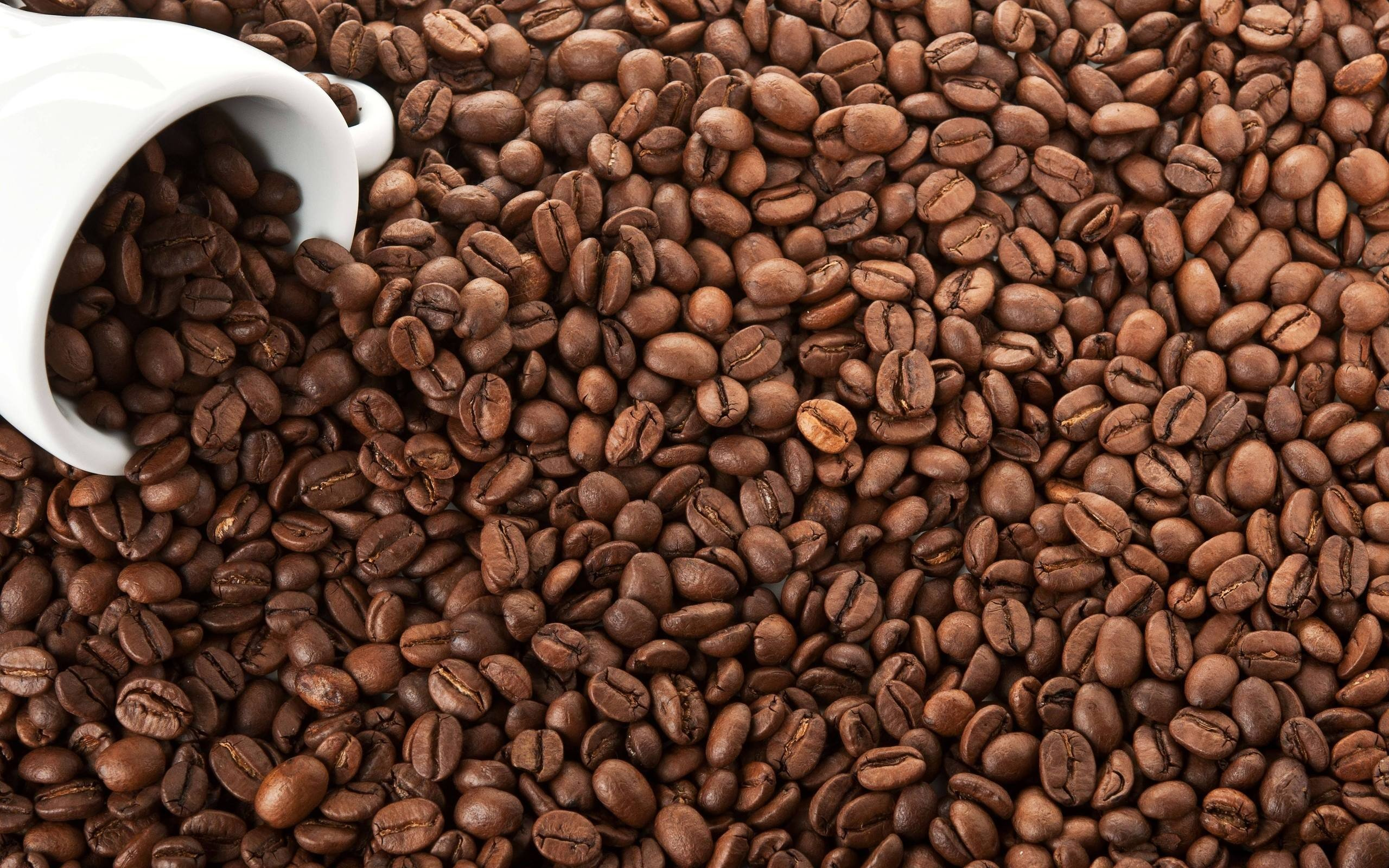 Coffee coffee beans wallpaper | 2560x1600 | 256837 ...