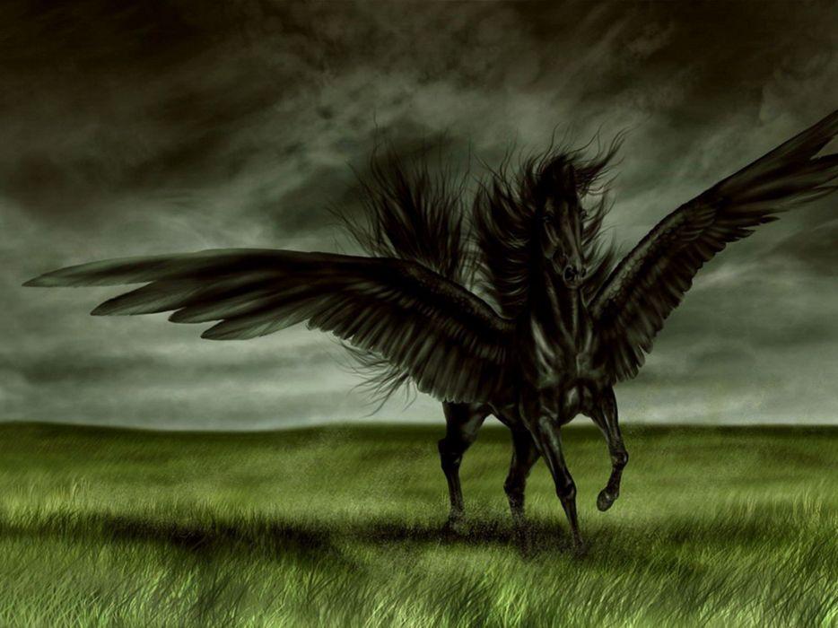 fantasy art horses pegasus artwork wallpaper