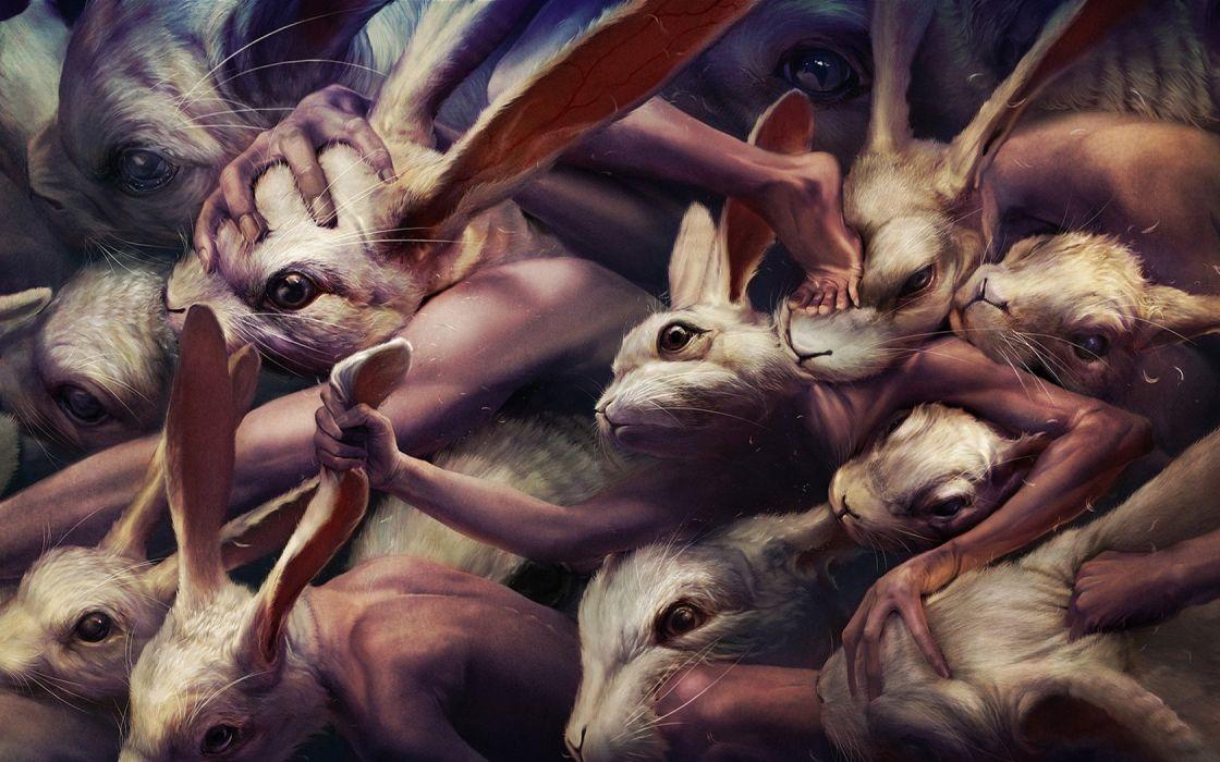 ryohei hase hands rabbits wallpaper
