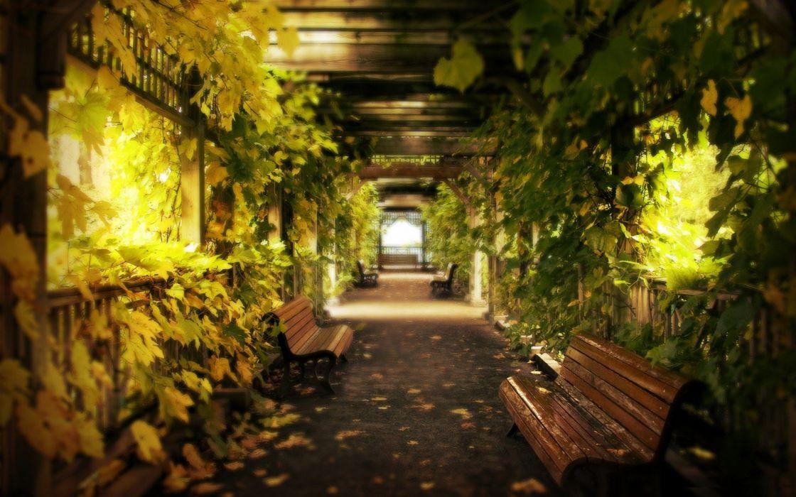 light Alley natural lighting wallpaper