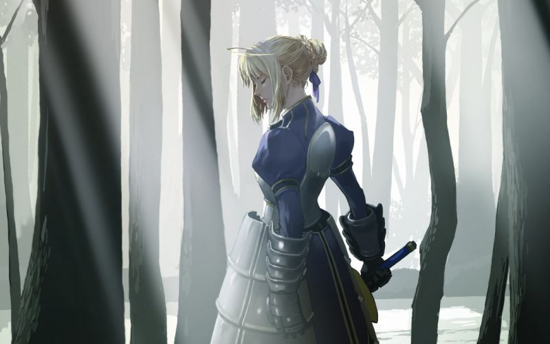 Fate/Stay Night Saber Fate series wallpaper