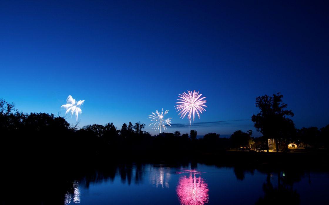 landscapes trees fireworks nighttime celebration  wallpaper