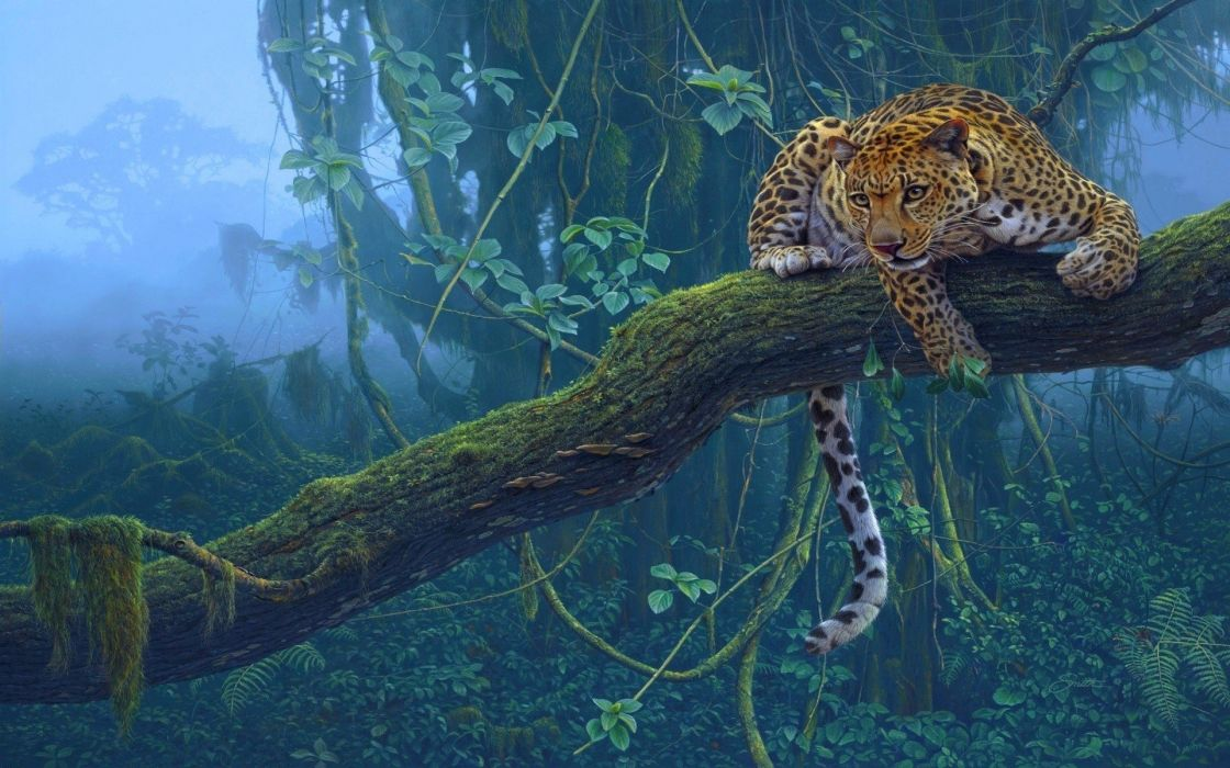 nature trees jungle animals leopards wallpaper