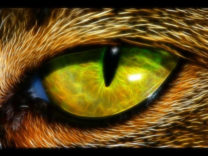 eyes animals Fractalius wallpaper