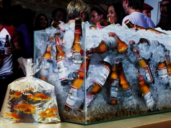 beers ice fish party wallpaper