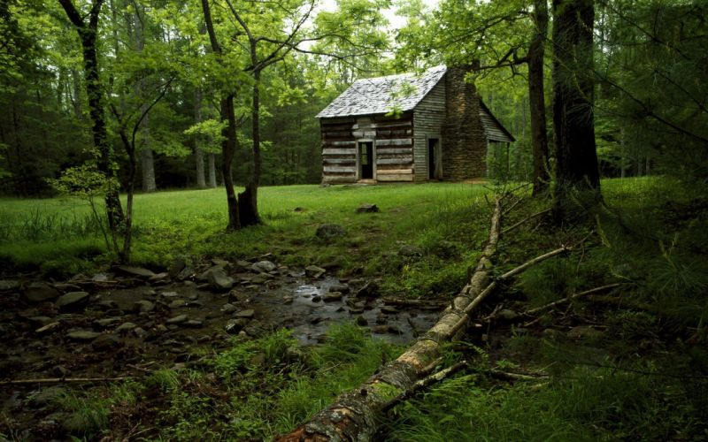water landscapes nature trees wood forests leaves wildlife hunter rocks hut wallpaper
