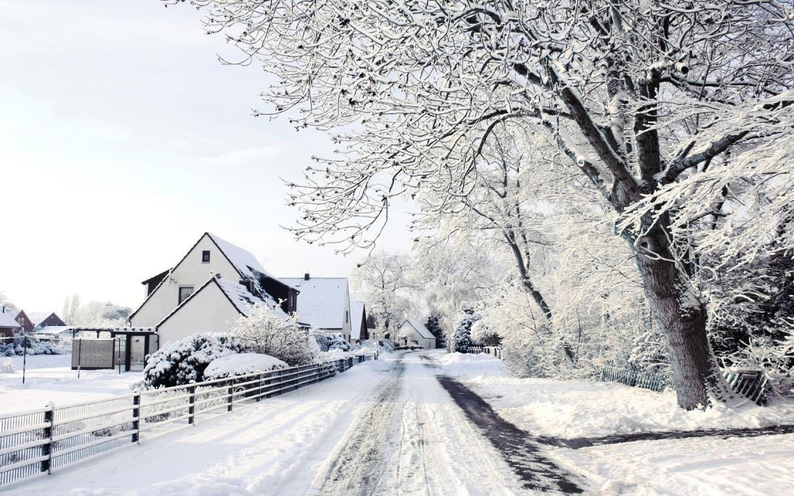 snow trees houses wallpaper