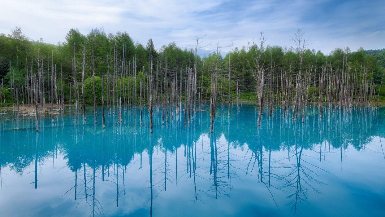 water Japan blue landscapes nature trees Hokkaido wallpaper