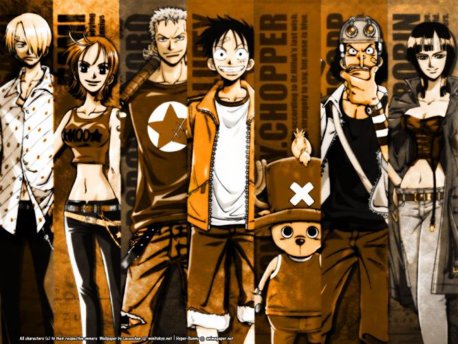 One Piece (anime) wallpaper