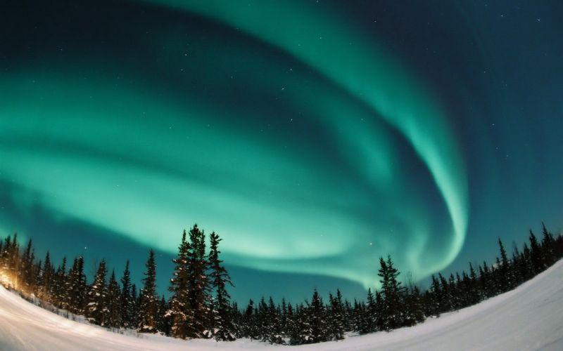 landscapes snow forests aurora borealis wallpaper