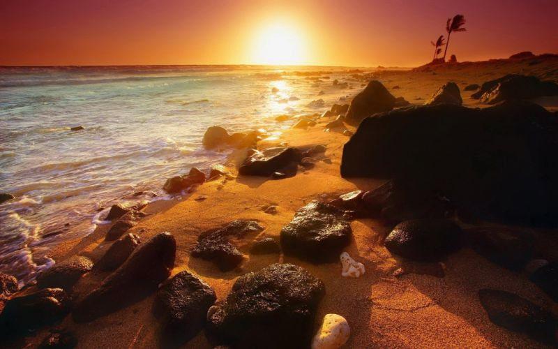 sunset sand rocks scenic oceans palm trees waterscapes beaches wallpaper