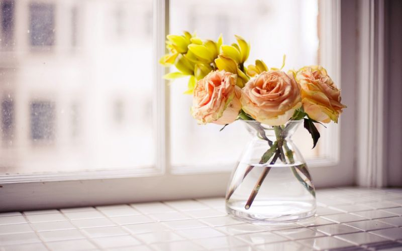 flowers roses vase yellow flowers windowsill wallpaper