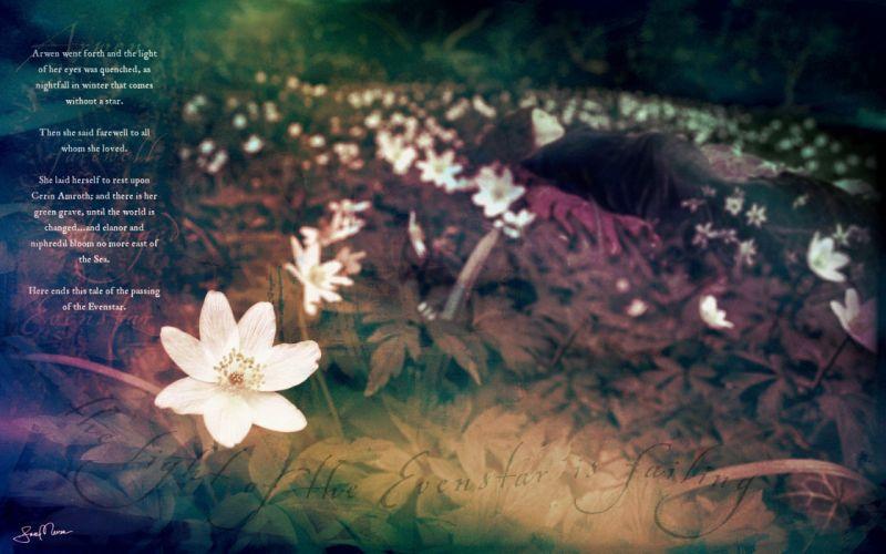 multicolor text The Lord of the Rings elves artwork poetry Arwen Undomiel white flowers wallpaper