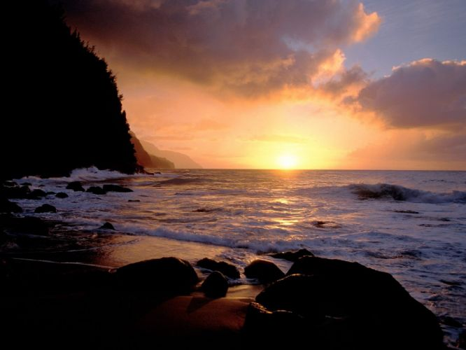 dawn forests sea beaches wallpaper