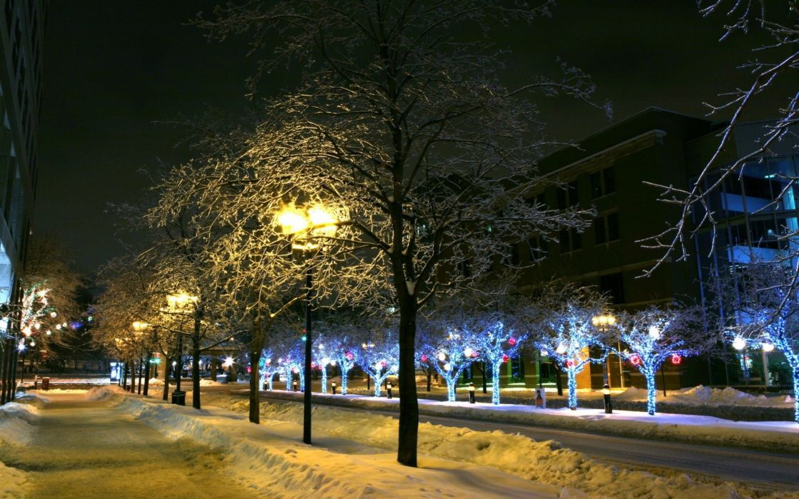 winter night Christmas New Year wallpaper