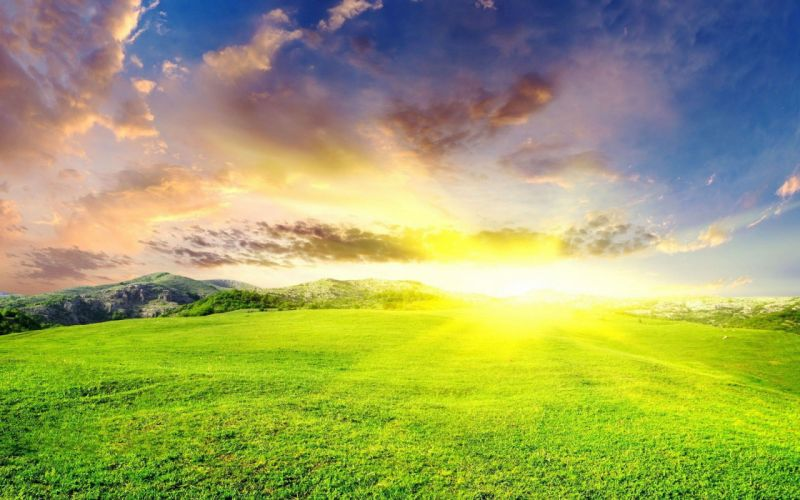 landscapes Sun grass wallpaper