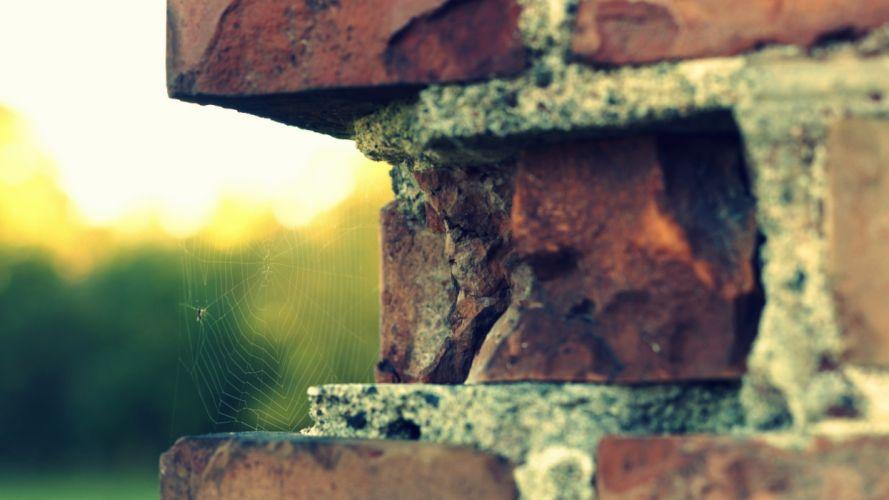 bricks spider webs wallpaper